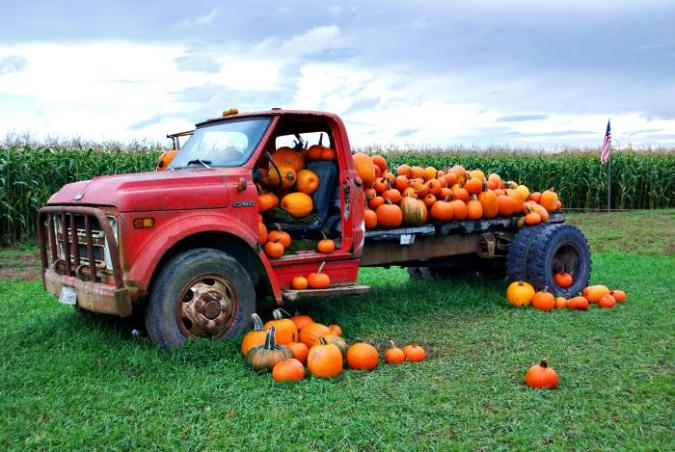 Chevy-truck-cornfield-pumpkins