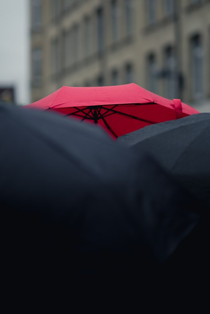 red-umbrella-in-a-sea-of-black-umbrellas