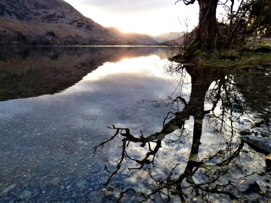 the image shows a gnarled, winter tree, and the sun glowing behind the hills, reflecting in the waters of a clear lake.