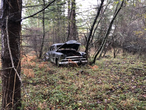 ff-teds-car-in-the-woods