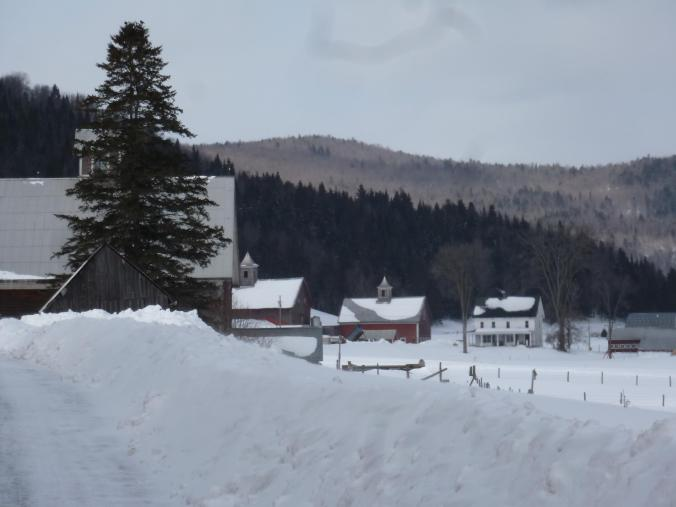 snow-field-farmhouse-barn-mountain-pine-tre