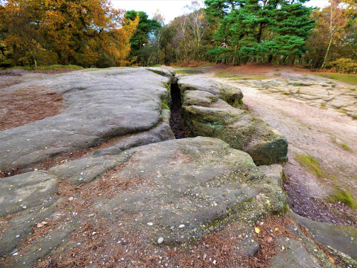the image shows a clearing in an autumnal wood, where what appears to be a large crack runs the rock floor.