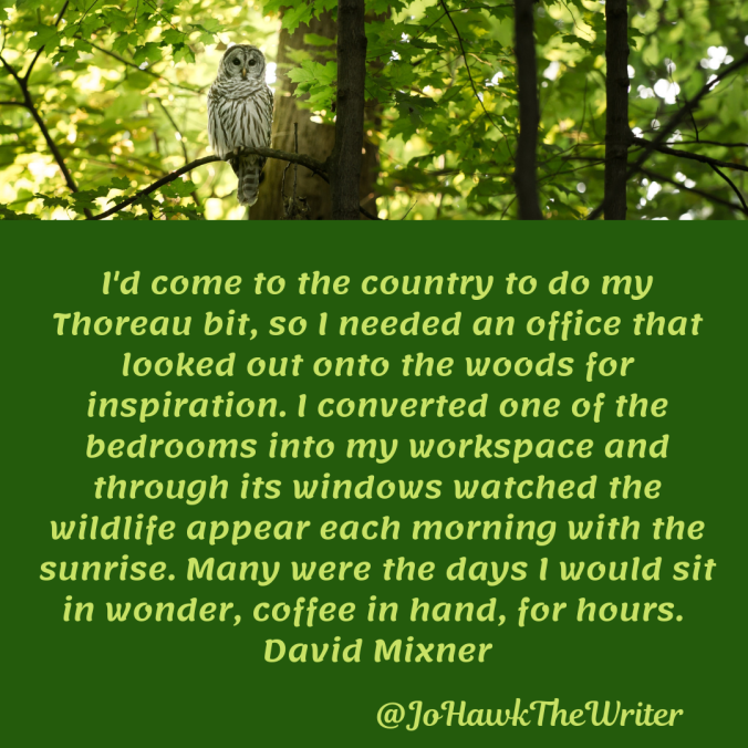 id-come-to-the-country-to-do-my-thoreau-bit-so-i-needed-an-office-that-looked-out-onto-the-woods-for-inspiration.-i-converted-one-of-the-bedrooms-into-my-workspace-and-through-its-window.