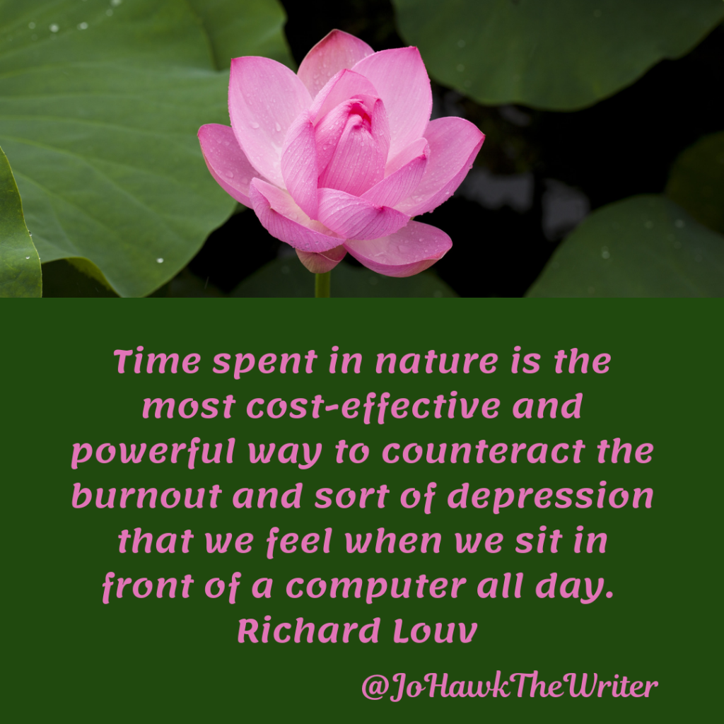 time-spent-in-nature-is-the-most-cost-effective-and-powerful-way-to-counteract-the-burnout-and-sort-of-depression-that-we-feel-when-we-sit-in-front-of-a-computer-all-day.-richard-louv.
