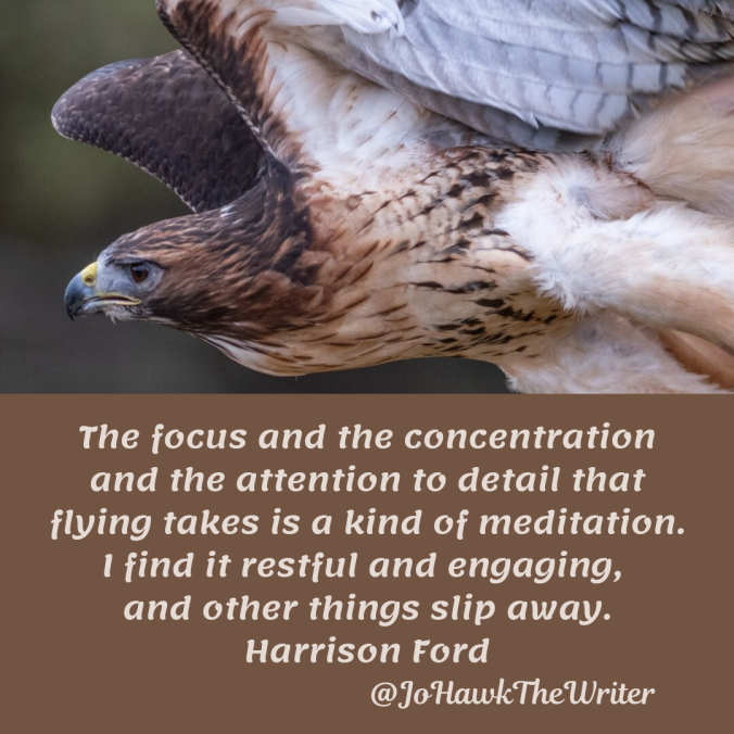 the-focus-and-the-concentration-and-the-attention-to-detail-that-flying-takes-is-a-kind-of-meditation.-i-find-it-restful-and-engaging-and-other-things-slip-away.-harrison-ford.