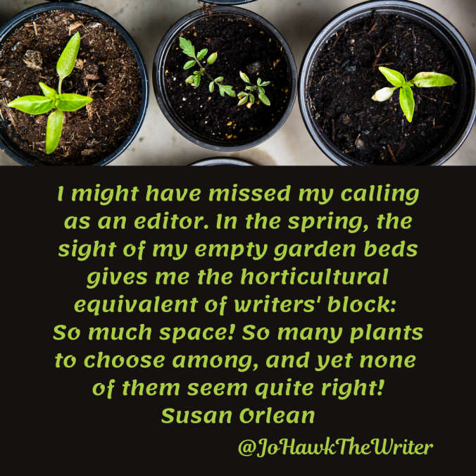 i-might-have-missed-my-calling-as-an-editor.-in-the-spring-the-sight-of-my-empty-garden-beds-gives-me-the-horticultural-equivalent-of-writers-block_-so-much-space-so-many-plants-to-choos.