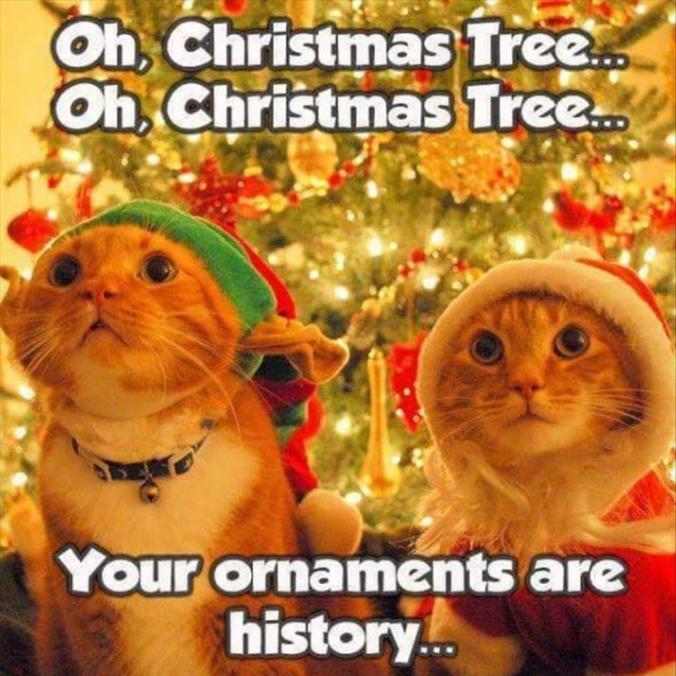 oh-christmas-tree-your-ornaments-are-history