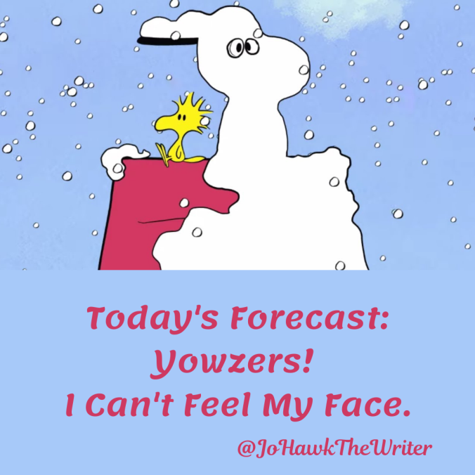 todays-forecast_-yowzers-i-cant-feel-my-face