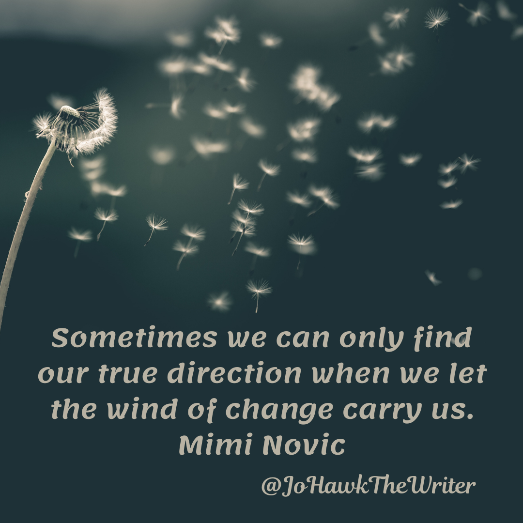 sometimes-we-can-only-find-our-true-direction-when-we-let-the-wind-of-change-carry-us.-mimi-novic